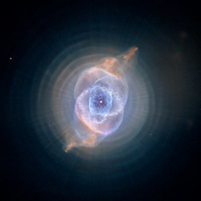 Super Nova Menagerie: Hubble Image